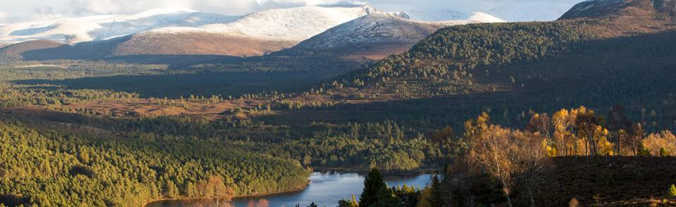 Rothiemurchus and Cairngorms <span class='photocredit'>Photo: Neil Wakeling / inspirationalimage.co.uk</span>