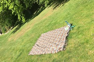 Strathspey lawn